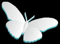LJG Butterfly Motif